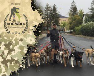 top-dog walk copy